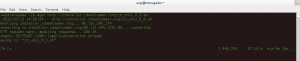 Download JDownloader installation script using wget