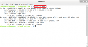 Generating A Report Of Network Interfaces From Linux Terminal