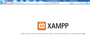 XAMPP page on local web server