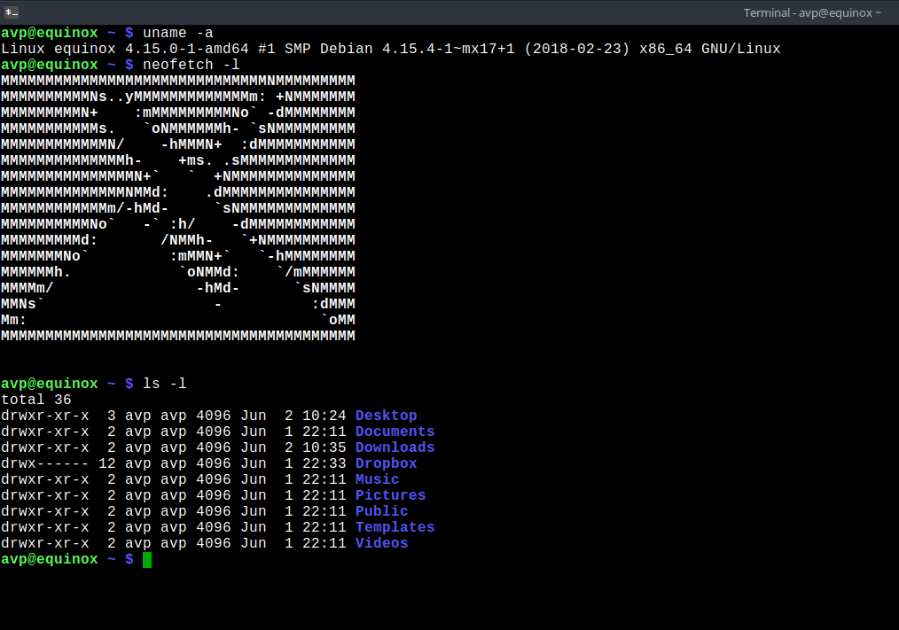 Terminal in MX Linux