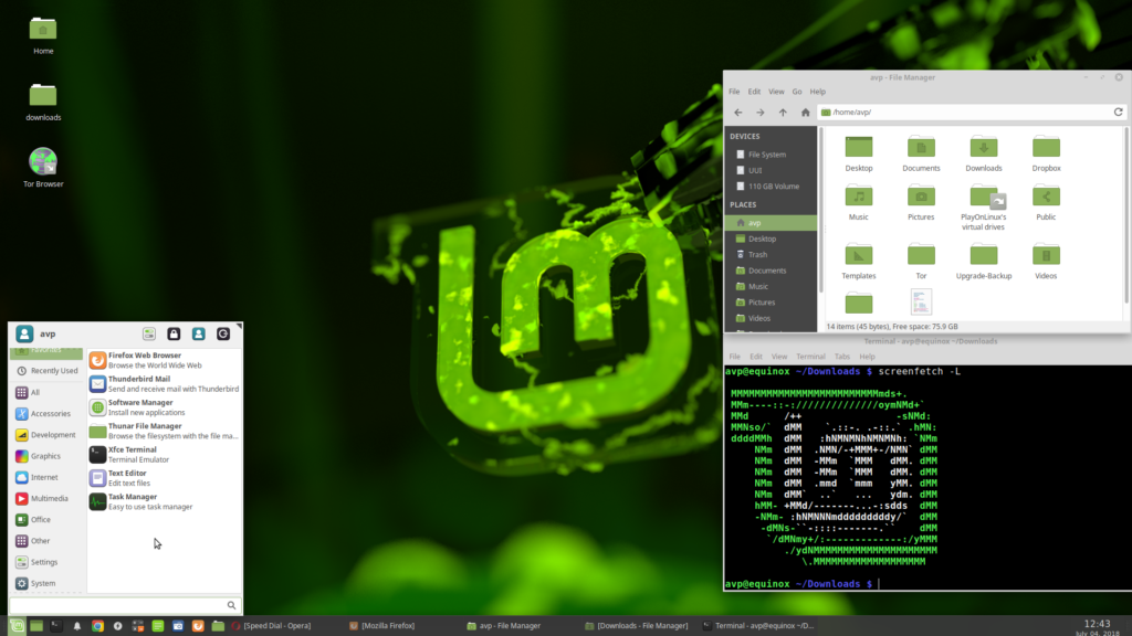 Upgraded to Linux Mint 19