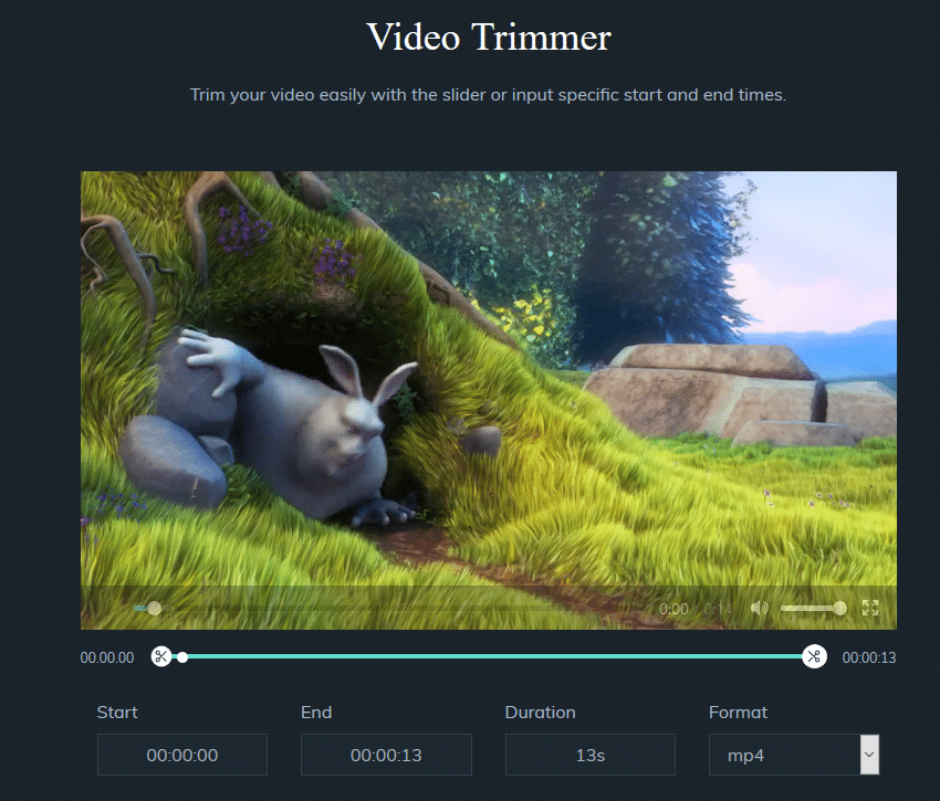 playback source video and selecting trim points in Filmore Online Video Trimmer
