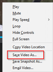 save video locally using Twitter Video Downloader