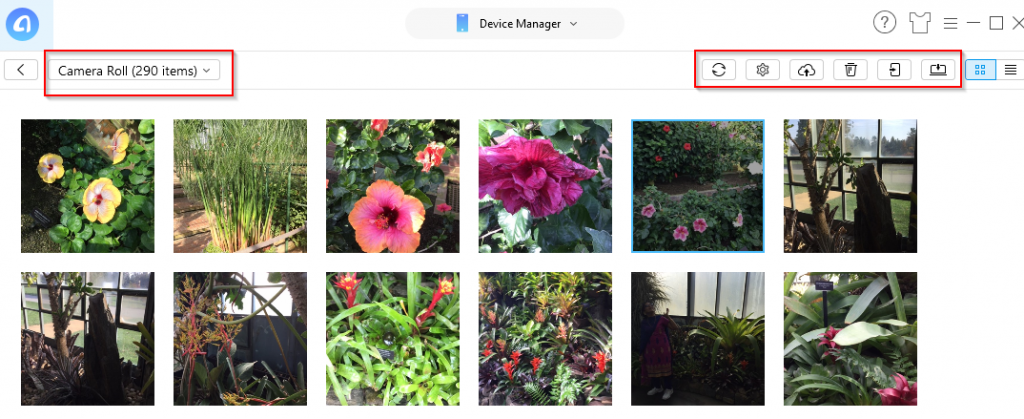 previewing photos from iPad/iPhone and managing them using AnyTrans