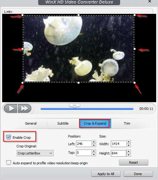 crop and expand videos in WinX HD Video Converter Deluxe