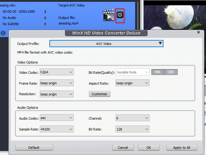 changing advanced options for source videos before conversion using WinX HD Video Converter Deluxe