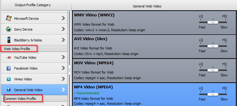 web video profiles in WinX HD Video Converter Deluxe