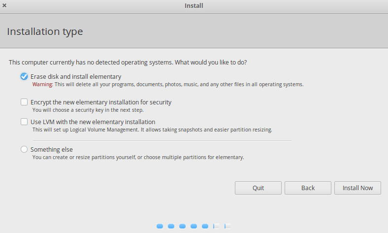 choosing a disk partitioning scheme during elementary OS installation