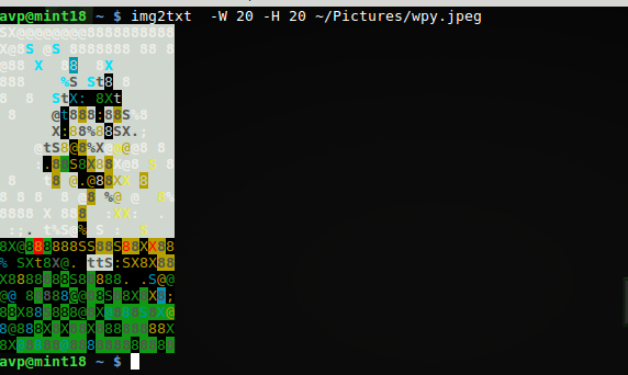 specifying custom width and height for source image to be converted to ASCII art using img2txt