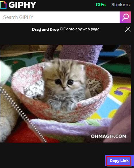 selecting gifs from GIPHY for Chrome add-on