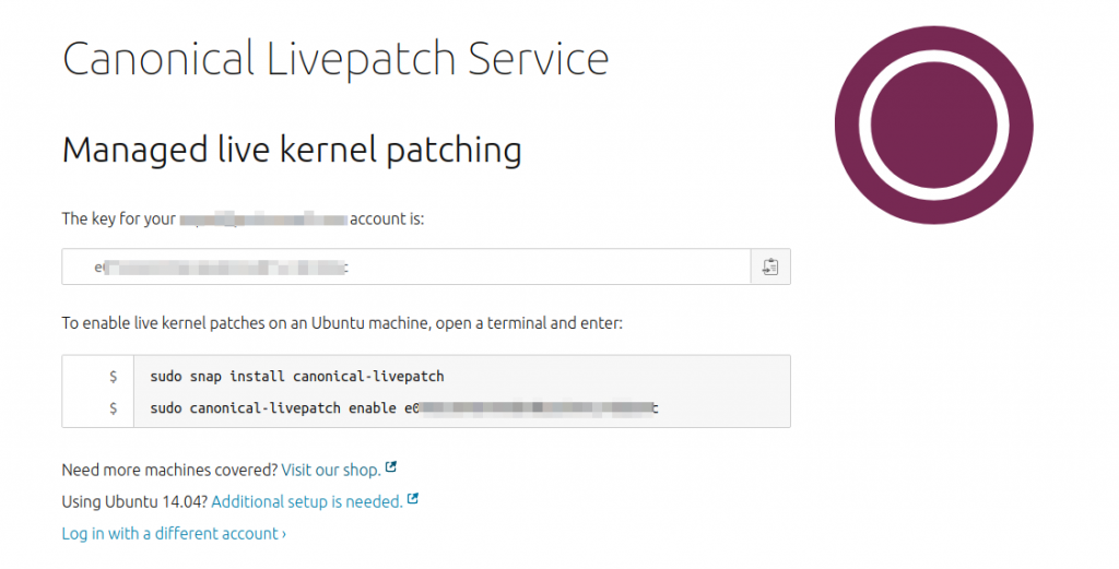 Canonical Livepatch Service commands
