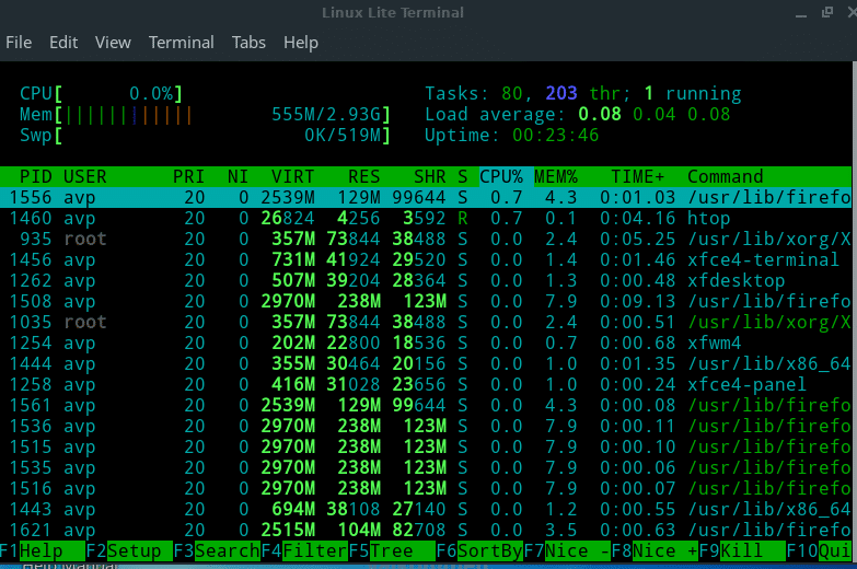 htop comes installed in Linux Lite