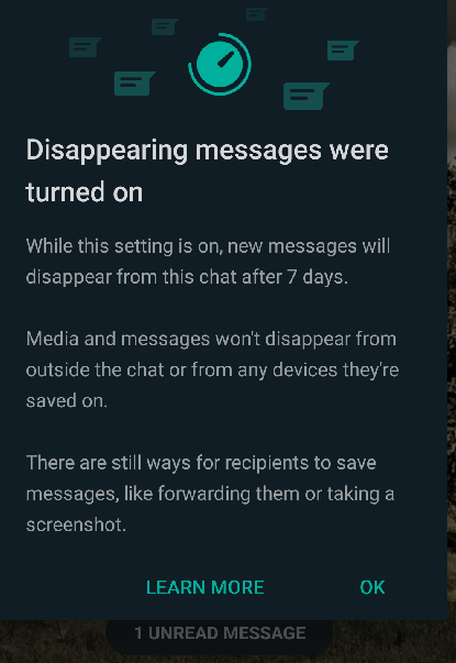 recipients will be notified about disappearing messages too