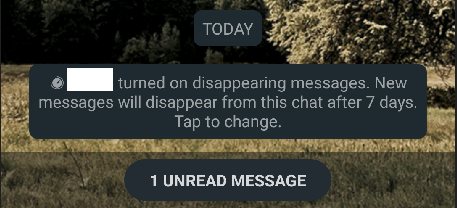 recipients can also turn off disappearing messages
