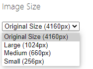 changing the image size for embedded photo