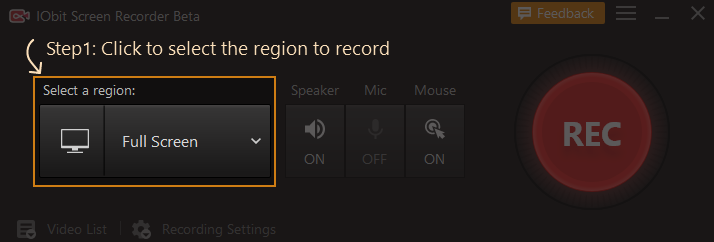 choosing a region to record using IObit Screen Recorder