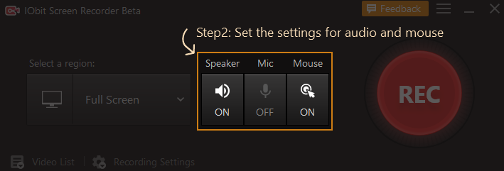 settings for audio and mouse in IObit Screen Recorder