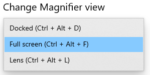 different views for Magnifier