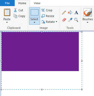 copy-pasting selected area into paint after capturing it using web capture